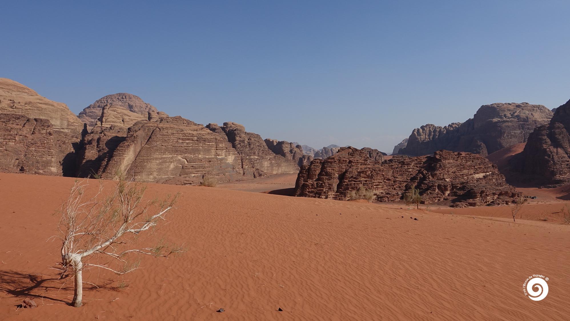 D'où l'Envie de Voyager - Wadi rum