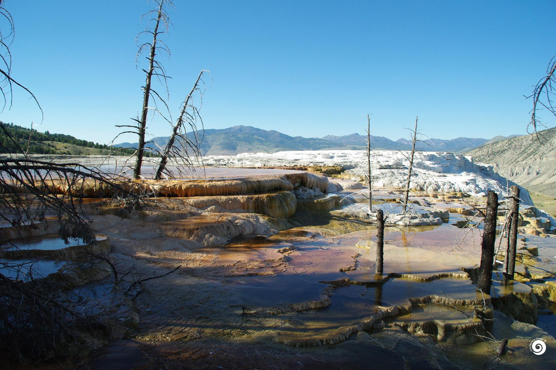yel-Devoyager-M-Yellowstone (5)