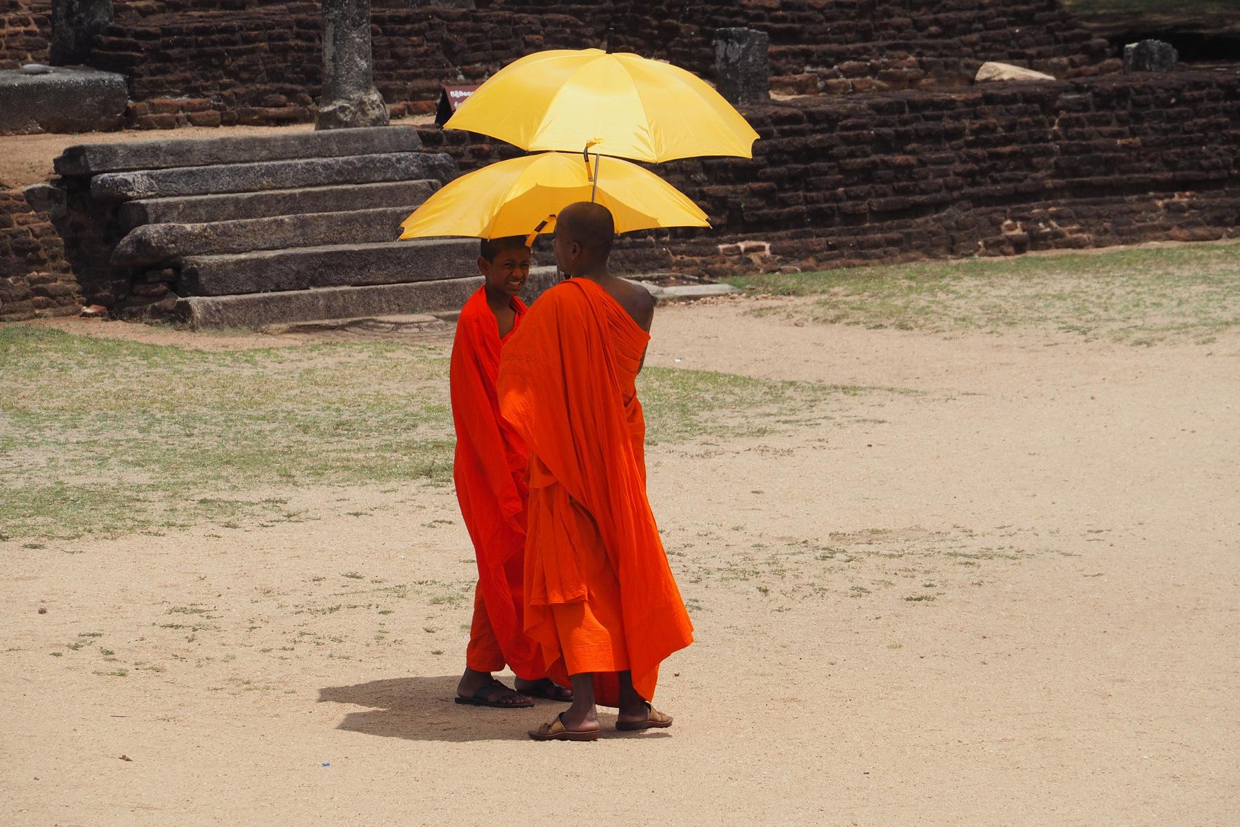 D'où l'Envie de Voyager - Sri Lanka 2